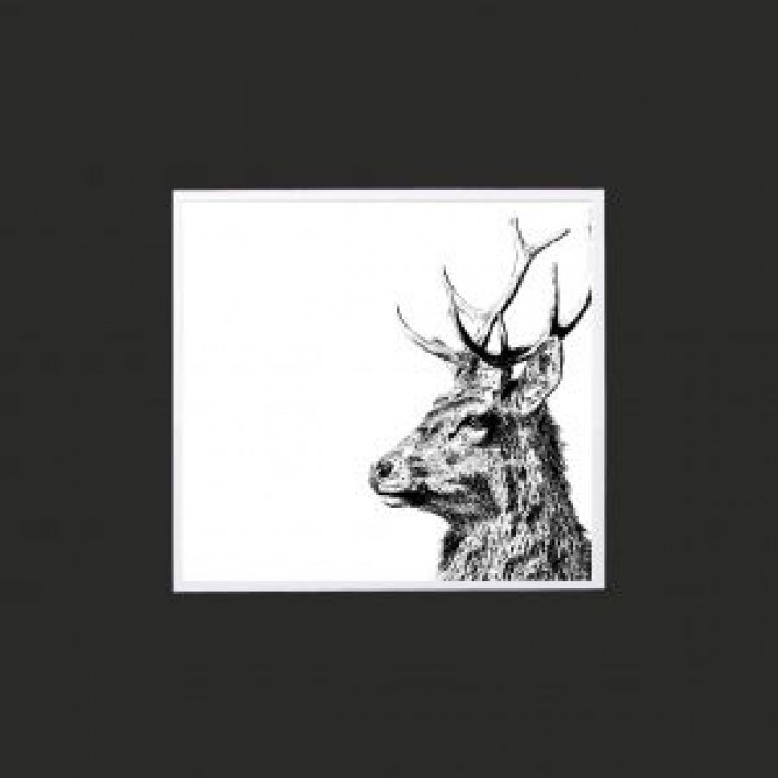 Imperial Stag Limited Edition Mounted Print-10""