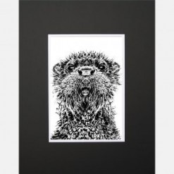 Otter Limited Edition Mounted Print