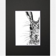 Sassy Hare Limited Edition Mounted Print