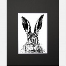 Solemn Hare Limited Edition Mounted Print