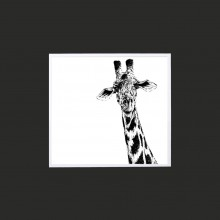 Giraffe Limited Edition Mounted Print-10""