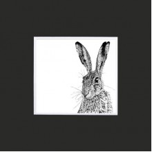 Shy Hare Greetings Card