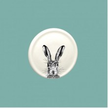 Shy Hare China Coaster